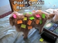 Funny Cat Picture031